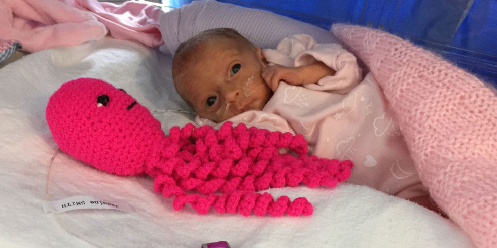 Crochet Octopus Preemie : How Crocheted Octopuses are Helping Premies - The Art of Science
